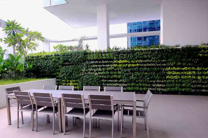 green walls sunshine coast, greenwalls brisbane, vertical gardens, elmich versiwall, greenwall installation