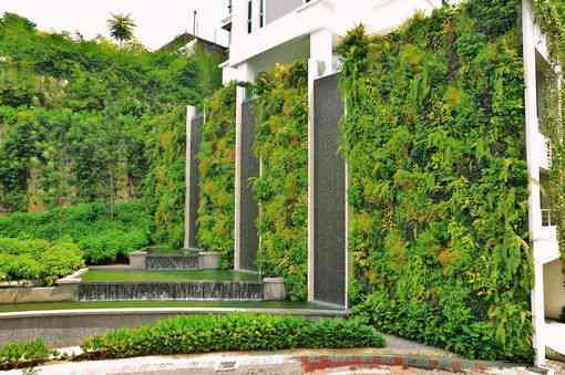 greenwall, vertical garden, elmich