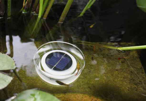Decorative Solar Light