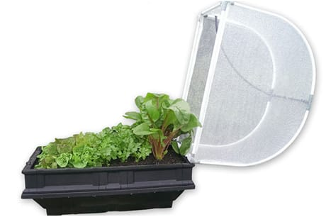 vegepod, vegepod small, vegetable garden, organic vegetables, raised garden bed, container garden, micro garden