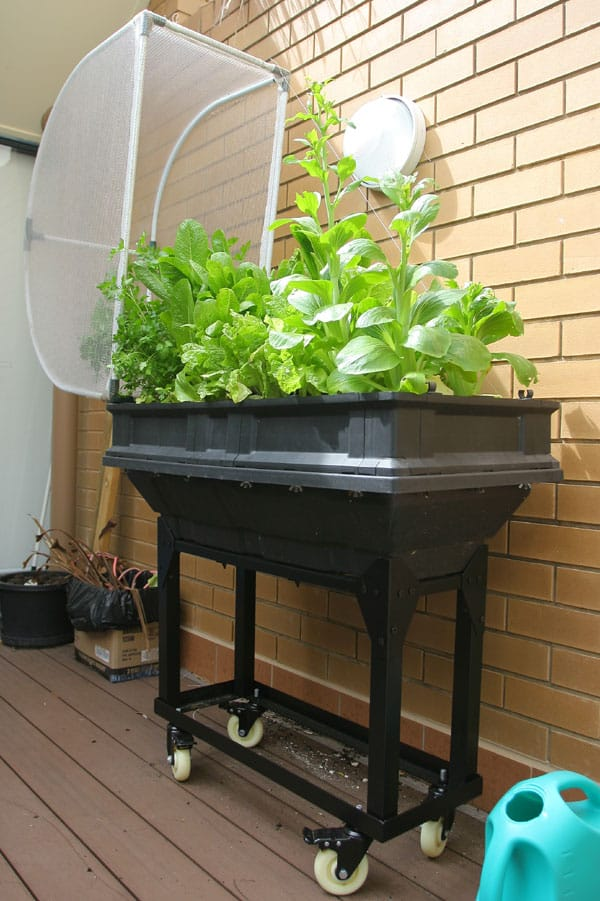 vegepod trolley stand small, vegepod, vegepod small, vegetable garden, organic vegetables, raised garden bed, container garden, micro garden