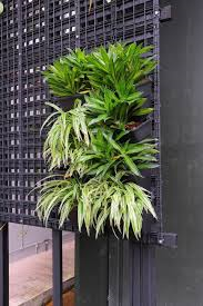 wholesale landscape material supply, modular greenwall vertical garden kit, greenwall kit, vertical garden, growall, greenwalls brisbane, greenwalls brisbane, greenwalls sunshine coast, green wall pot
